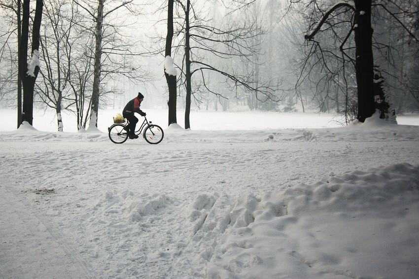 Pszczyna zimą