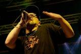 Reggae Day Festival 2009